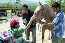 aspace terapia animales.